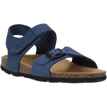 Schoenen Kinderen Sandalen / Open schoenen Grunland SB0236 Blauw