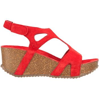 Schoenen Dames Sandalen / Open schoenen Docksteps DSE106246 Rood