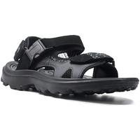 Schoenen Heren Sandalen / Open schoenen Lotto L52294 Zwart
