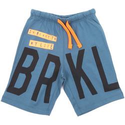 Textiel Kinderen Zwembroeken/ Zwemshorts Melby 70F5574 Blauw