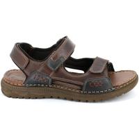 Schoenen Heren Sandalen / Open schoenen Grunland SA2526 Bruin