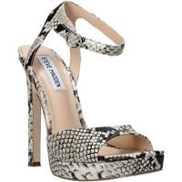 Schoenen Dames Sandalen / Open schoenen Steve Madden SMSLUV-GLDSNK Goud