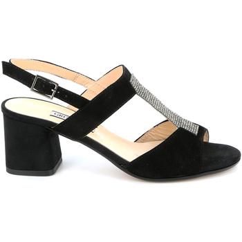 Schoenen Dames Sandalen / Open schoenen Grunland SA2516 Zwart