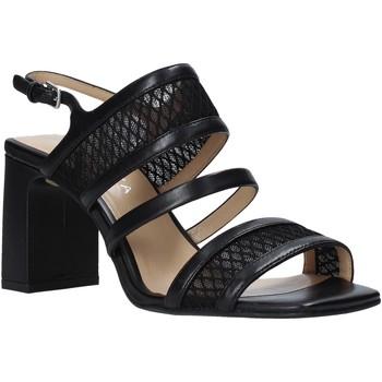 Schoenen Dames Sandalen / Open schoenen Apepazza S0MONDRIAN10/NET Zwart