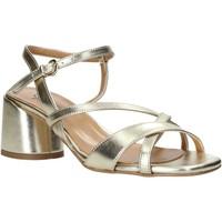 Schoenen Dames Sandalen / Open schoenen Grace Shoes 123010 Anderen