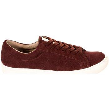Schoenen Heren Lage sneakers Hackett Semelle Fashion Cupsole Rood