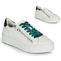 Schoenen Dames Lage sneakers Tamaris MILANIA Wit
