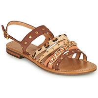 Schoenen Dames Sandalen / Open schoenen Geox D SOZY S I Brown / Beige