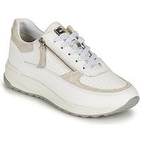 Schoenen Dames Lage sneakers Geox D AIRELL A Wit / Beige