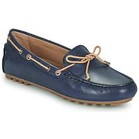 Schoenen Dames Mocassins Geox D LEELYAN C Blauw / Beige