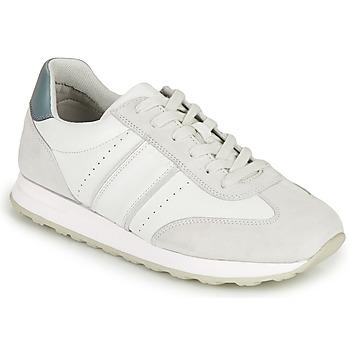 Schoenen Heren Lage sneakers Geox U FIDENZA B Wit / Blauw