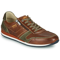 Schoenen Heren Lage sneakers Pikolinos LIVERPOOL M2A Brown