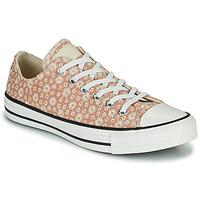 Schoenen Dames Lage sneakers Converse CHUCK TAYLOR ALL STAR CANVAS BRODERIE OX Beige