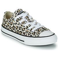 Schoenen Meisjes Lage sneakers Converse CHUCK TAYLOR OX Leopard / Multikleuren