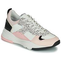 Schoenen Dames Lage sneakers Ted Baker IZSLA Wit / Roze