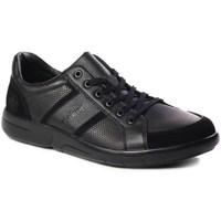 Schoenen Heren Lage sneakers Rieker B271200 Noir
