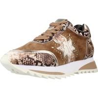 Schoenen Dames Sneakers Alma En Pena I20431 Bruin