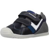 Schoenen Jongens Laarzen Biomecanics 201124 Blauw
