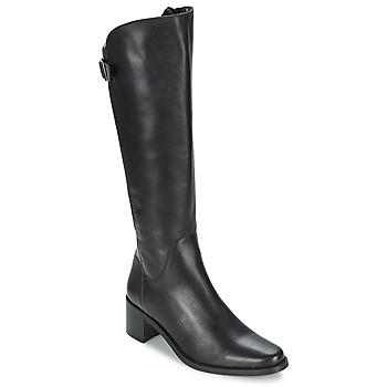 Schoenen Dames Hoge laarzen Betty London SALINA Zwart