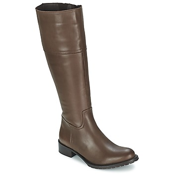 Schoenen Dames Hoge laarzen Betty London CAVAK Brown