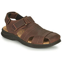 Schoenen Heren Outdoorsandalen Clarks HAPSFORD COVE Brown