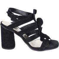 Schoenen Dames Sandalen / Open schoenen Sergio Cimadamore Sandales BK865 Noir