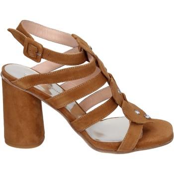 Schoenen Dames Sandalen / Open schoenen Sergio Cimadamore Sandali Camoscio Marrone