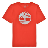 Textiel Jongens T-shirts korte mouwen Timberland LOLLA Rood