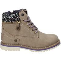 Schoenen Kinderen Laarzen Wrangler WG17230 Grijs