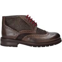 Schoenen Heren Laarzen Exton 63 Bruin