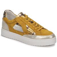Schoenen Dames Lage sneakers Regard HARY2 Geel