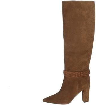 Schoenen Dames Hoge laarzen Paola Ferri D7347 Brown