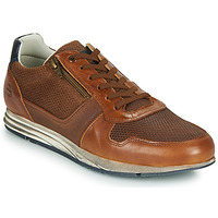 Schoenen Heren Lage sneakers Bullboxer 477K26343FKNCG Brown