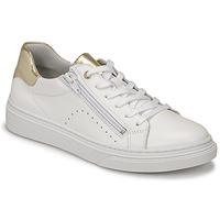 Schoenen Meisjes Lage sneakers Bullboxer AOP000E5L-WHPN Wit