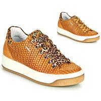 Schoenen Dames Lage sneakers IgI&CO SHOUHAI Ocre