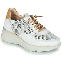 Schoenen Dames Lage sneakers Hispanitas TELMA Wit / Goud