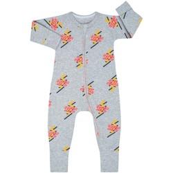 Textiel Kinderen Jumpsuites / Tuinbroeken DIM Barboteuse à manches longues avec fermeture éclair Grijs