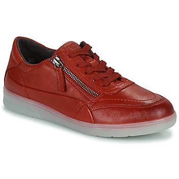 Schoenen Dames Lage sneakers Jana PHOEBIA Rood