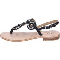 Schoenen Dames Sandalen / Open schoenen Adriana Del Nista Sandales BK994 Noir