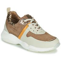 Schoenen Meisjes Lage sneakers JB Martin WILO Brown