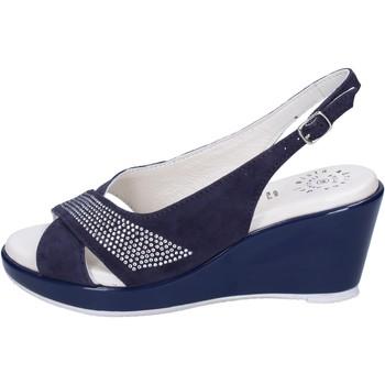 Schoenen Dames Sandalen / Open schoenen Adriana Del Nista Sandales BJ08 Bleu