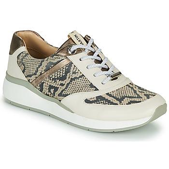 Schoenen Dames Lage sneakers JB Martin 1KALIO Beige