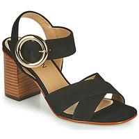 Schoenen Meisjes Sandalen / Open schoenen JB Martin 1NICKY Zwart