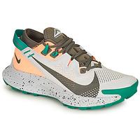 Schoenen Dames Running / trail Nike NIKE PEGASUS TRAIL 2 Blauw / Groen