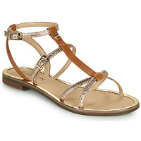 Schoenen Meisjes Sandalen / Open schoenen JB Martin 1GRIOTTES Brown