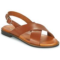 Schoenen Dames Sandalen / Open schoenen Minelli DONA Brown