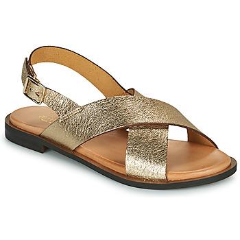 Schoenen Dames Sandalen / Open schoenen Minelli DONA Goud