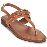 Schoenen Dames Sandalen / Open schoenen Minelli LIZA Brown