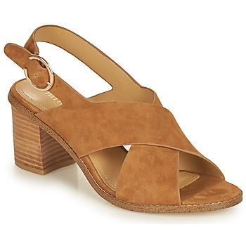 Schoenen Dames Sandalen / Open schoenen Minelli CASIMIERA Brown