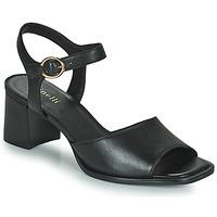 Schoenen Dames Sandalen / Open schoenen Minelli TURINA Zwart